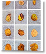 Collage - Leaves On Granite 1 Metal Print