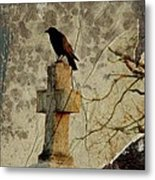 Collage Of Crow Metal Print