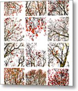 Collage The Beauty Of Rowan Metal Print