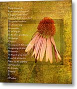 Collective Poem With Echinacea Flower Metal Print