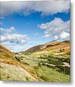 College Valley Metal Print