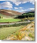 College Valley Forest Metal Print