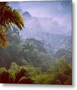 Colombia Forrest Metal Print