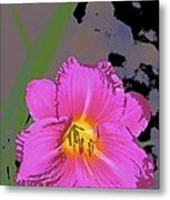 Color 139 Metal Print
