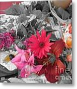 Color Accents Metal Print