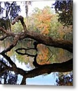 Color Beyond The Branches Metal Print