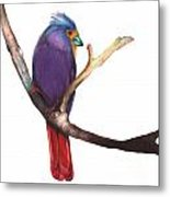 Color Bird 7 Metal Print