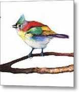 Color Birds Study 3 Metal Print