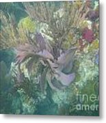Color Corals Metal Print by Adam Jewell
