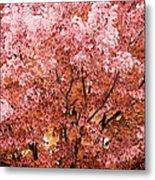 Color In The Tree 03 Metal Print