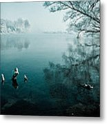 Color Of Ice Metal Print