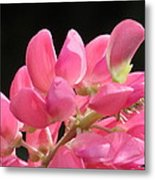 Color Of The Day Metal Print