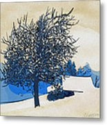 Color Of Winter Metal Print