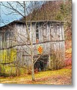 Color On The Dirt Road Metal Print