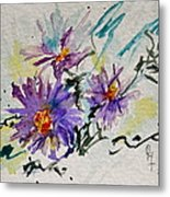 Colorado Asters Metal Print