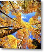 Colorado Autumn Sky Metal Print