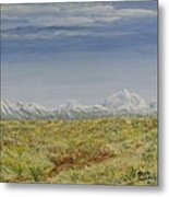 Colorado Eastern Plains Metal Print