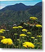 Colorado Rocky Mountain Metal Print