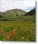 Colorado Meadow And Mountain Landscape Metal Print