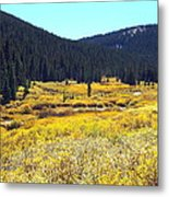 Colorado River Valley In Fall Metal Print