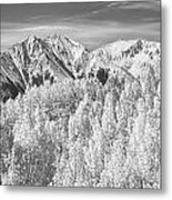 Colorado Rocky Mountain Autumn Beauty Bw Metal Print