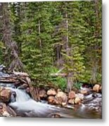 Colorado Rocky Mountain Forest Stream Metal Print