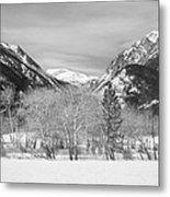 Colorado Rocky Mountain Winter Horseshoe Park Bw Metal Print
