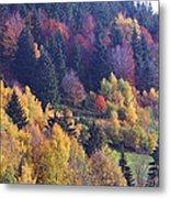 Colored Landscape Metal Print