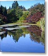 Colorful Arboretum Metal Print