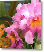 Colorful Assorted Cattleya Orchids Metal Print