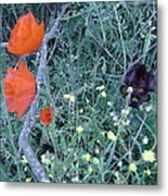 Colorful Bouquet Metal Print
