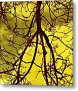 Colorful Branches Metal Print