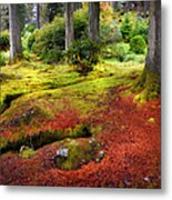 Colorful Carpet Of Moss In Benmore Botanical Garden. Scotland Metal Print