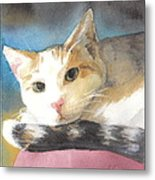 Colorful Cat Watercolor Portrait Metal Print
