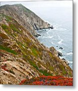 Colorful Cliffs At Point Reyes Metal Print