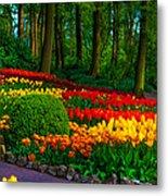 Colorful Corner Of The Keukenhof Garden 4. Tulips Display. Netherlands Metal Print