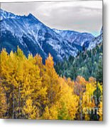 Colorful Crested Butte Colorado Metal Print