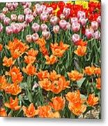 Colorful Flower Bed Metal Print