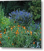 Colorful Flowers Along The Trail Metal Print