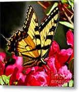 Colorful Flying Garden Metal Print
