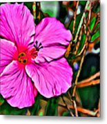 Colorful Hibiscus Metal Print