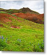 Colorful Iceland Landscape With Green Orange Brown Tones Metal Print