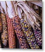Colorful Indian Corn Metal Print