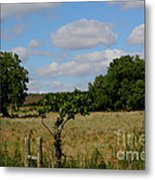 Colorful Kansas Country Pasture Metal Print
