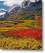 Colorful Land - Alaska Metal Print