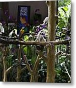 Colorful Macaw And Other Birds At The Jurong Bird Park In Singapore Metal Print