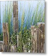 Colorful Planter And Timber Supports Metal Print