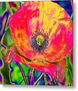 Colorful Poppy Metal Print