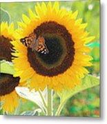 Colorful Sunflower Metal Print