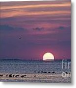 Colorful Sunset Sky Metal Print by Tammy Smith